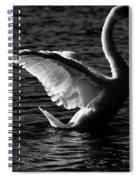 Swan Wingspan Spiral Notebook