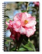 Sweet Camellia Spiral Notebook