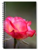 Sweet October Rose Spiral Notebook