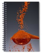 1 Tablespoon Paprika Spiral Notebook