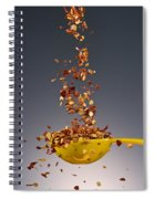 1 Tablespoon Red Pepper Flakes Spiral Notebook