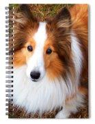 Taffy Spiral Notebook