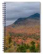 Tapestry Of Fall Colors Spiral Notebook