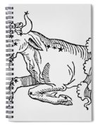 Taurus  Spiral Notebook