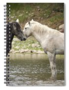 Tender Moments - Wild Horses  Spiral Notebook