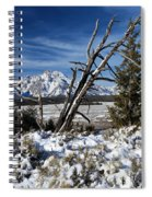 Tetons In The Distance Spiral Notebook