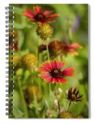 The Colors Of Summer  Spiral Notebook