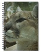 The Cougar 3 Spiral Notebook