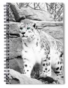 The Eyes Have It Spiral Notebook