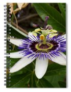 The Flower 13 Spiral Notebook