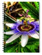 The Flower 14 Spiral Notebook