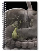 The Gallbladder Spiral Notebook