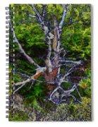 The Graceful Dead Detail Spiral Notebook