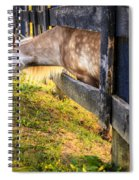 The Grass Is Greener... Spiral Notebook