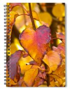 The Heart Of Fall Spiral Notebook