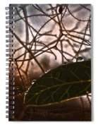 The Last Leaf Spiral Notebook
