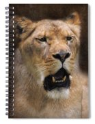 The Lioness Spiral Notebook