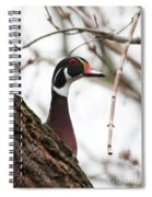 The Look Out Spiral Notebook