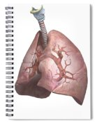 The Lungs Spiral Notebook