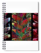 The Many Faces Of Heliconia  Spiral Notebook