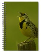 The Meadowlark Sings Spiral Notebook