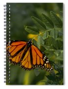 The Monarch Spiral Notebook