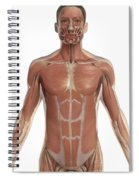 The Muscles Of The Torso Spiral Notebook