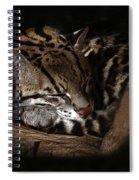 The Ocelot Spiral Notebook