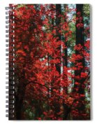 The Red Tree  Spiral Notebook