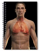 The Respiratory And Cardiovascular Spiral Notebook