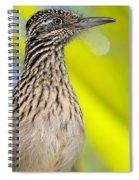 The Roadrunner  Spiral Notebook