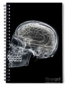 The Skull And Brain Spiral Notebook