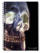 The Skull And Paranasal Sinuses Spiral Notebook