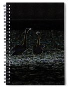 The Swan Of Tuonela Spiral Notebook