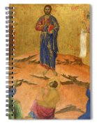 The Transfiguration Spiral Notebook