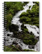 The Water Snake Spiral Notebook