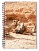 Three Camels Spiral Notebook
