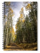 A Path Through The Woods  Spiral Notebook