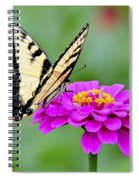 Tiger Swallowtail Butterfly On Zinnia Spiral Notebook