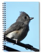 Titmouse Spiral Notebook