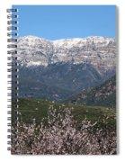 Topa Topa Spiral Notebook