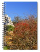 Torcal Natural Park Spiral Notebook