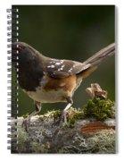 Towhee Spiral Notebook