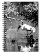 Tranquility Bw Spiral Notebook