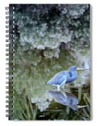 Tri Colored Heron Spiral Notebook