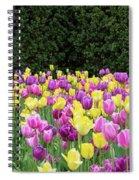 Tulip Flowers In A Garden, Chicago Spiral Notebook