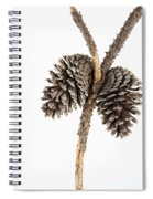 Two Pine Cones One Twig Spiral Notebook