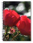 Two Red Roses Spiral Notebook