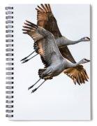 Two Sandhill Cranes Spiral Notebook