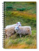 Two Sheep Spiral Notebook